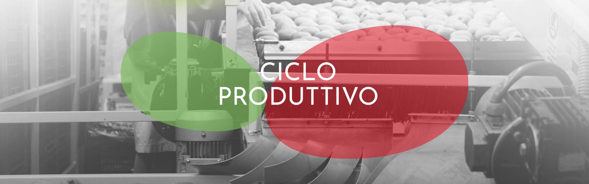 slide ciclo produttivo