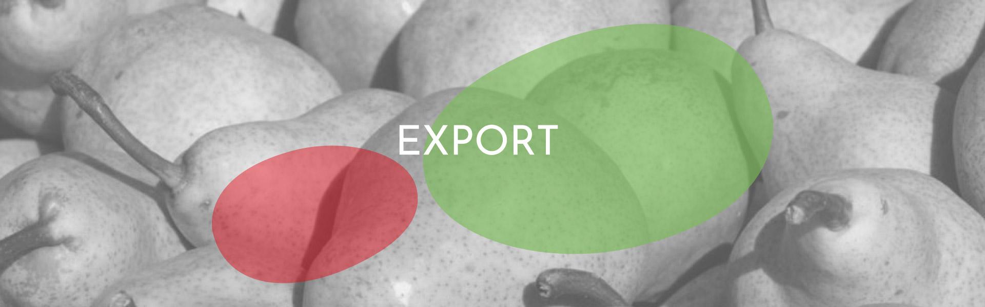 slide export eng